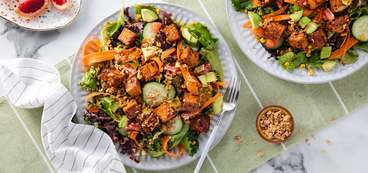 368 173 vegan bbqtofu rainbow salads with bbq tofu   blood orange balsamic hero 1