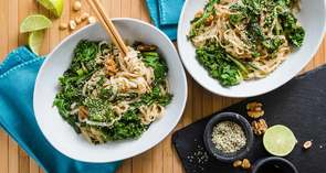 Lime Peanut Noodles with Hemp Seeds & Yu Choy